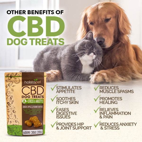 holistapet cbd dog treats other benefits include appetite stimulation itchy skin digestive issues muscle spasms inflammation and anxiety stress