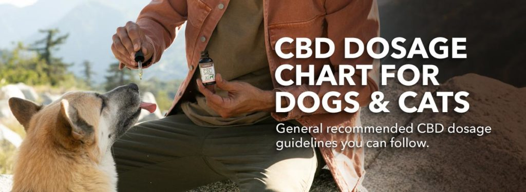 cbd dosage chart for dogs & cats