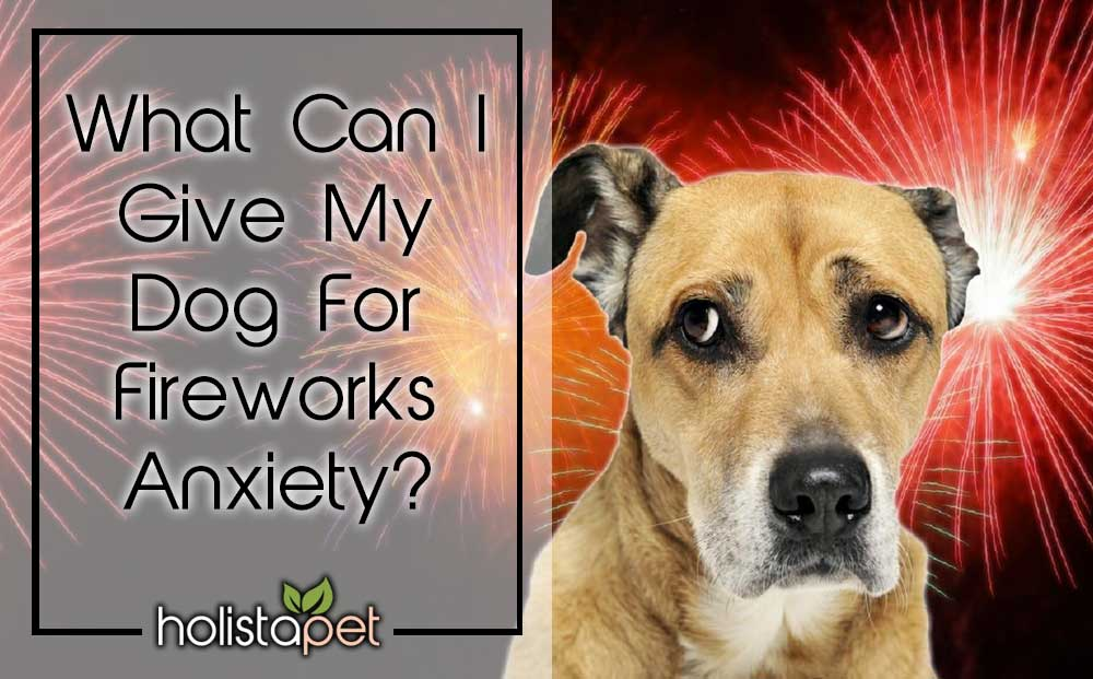 what can I give my dog for fireworks anxiety CBD