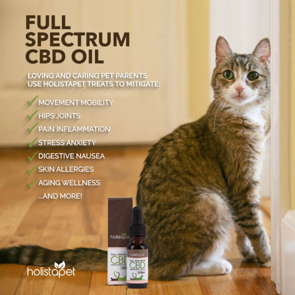 CBD Full Spectrum Holistapet Oil Tincture Benefits Mobility hips joints inflammation stress anxiety nausea allergies wellness