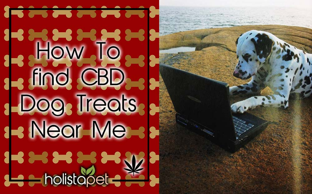 how to find CBD oil near me featured blog image