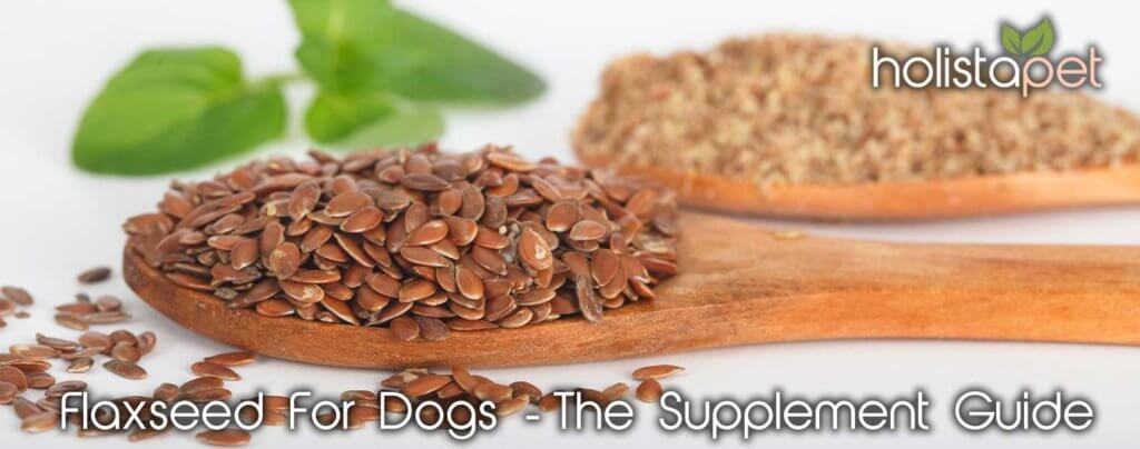 Flaxseed for dogs Supplement Guide