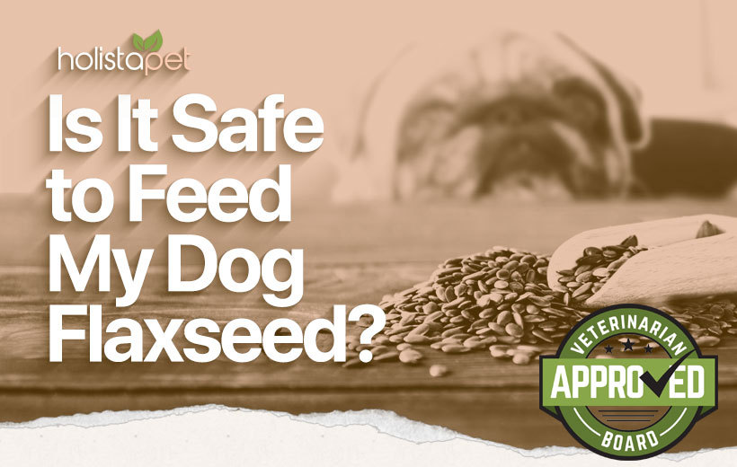 is it safe to feed my dog flaxseeds featured image post