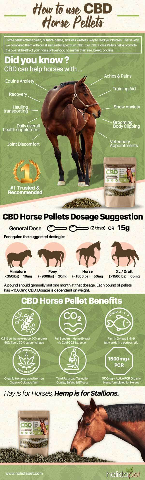 cbd pellets for horses infographic see how they work
