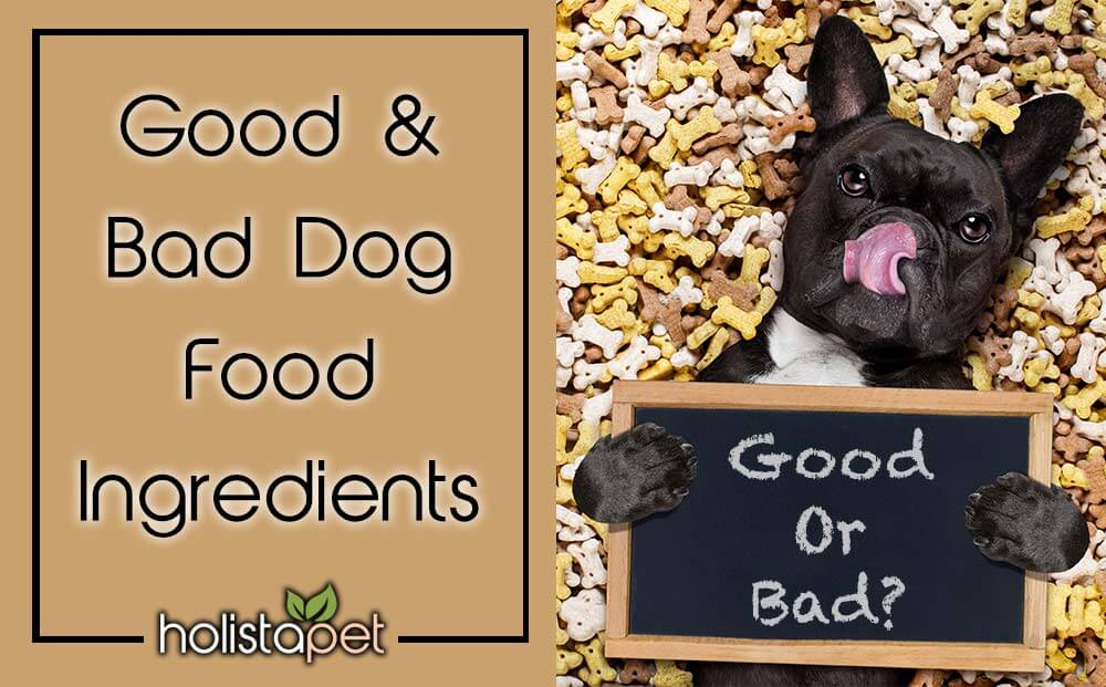 Good and bad dog food ingredients
