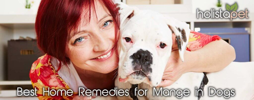what is the best home remedy for dog mange?