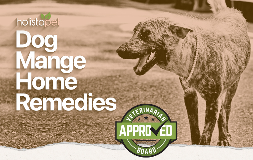 what is the best home remedy for dog mange
