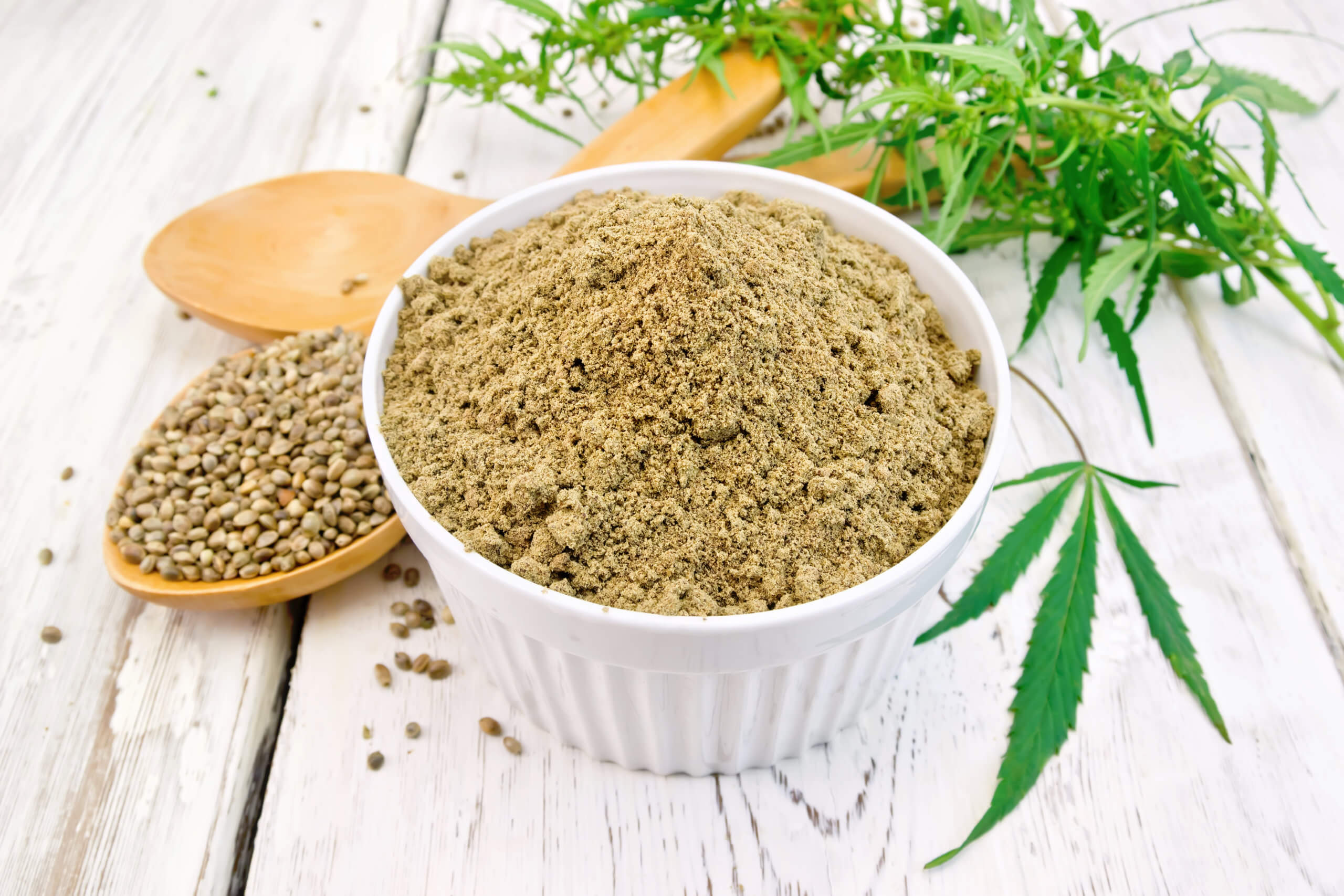 hemp protein powder for dogs