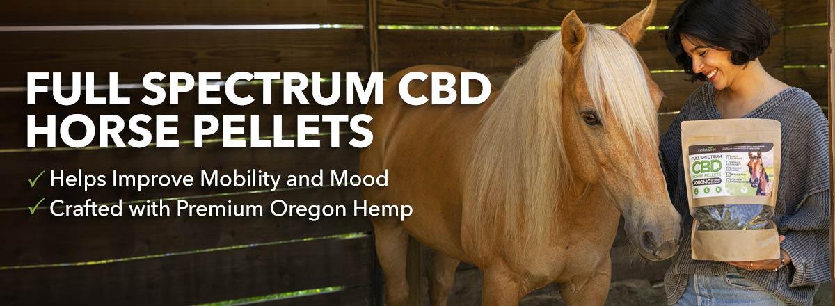 HolsitaPet CBD pellets for horses girl holding CBD horse pellets in hand page banner