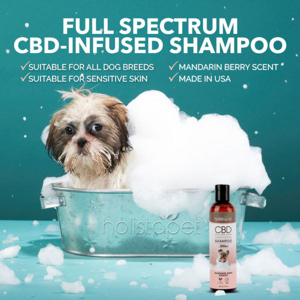 cbd shampoo can improve dog shedding