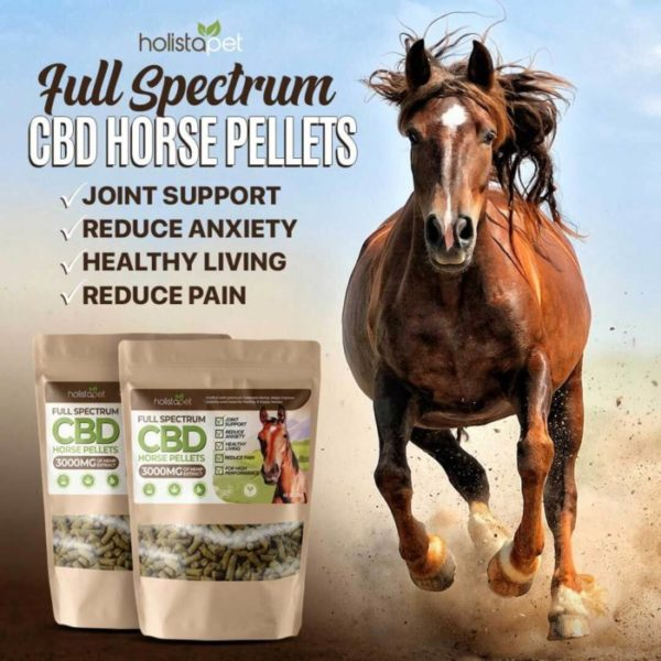 holistapet Full Spectrum CBD Horse Pellets Vegan High Perfomance Horse Pellets Reduce Anxiety Joint Support Healthy Living Reduce Pain