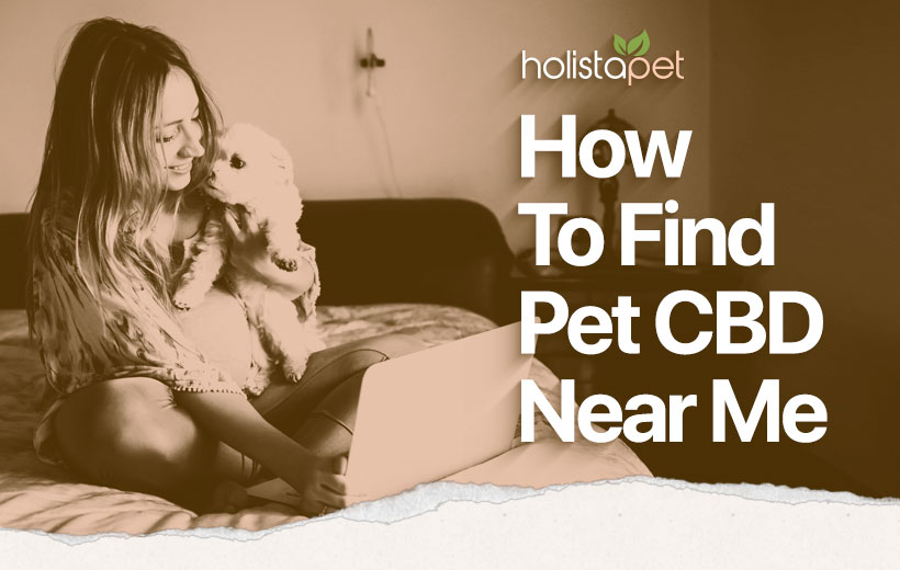 How to find pet CBD near me featured blog image