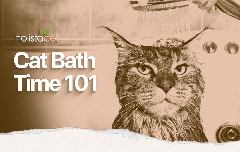 "a cat gwtting a shower with text ""cat bath time 101"""