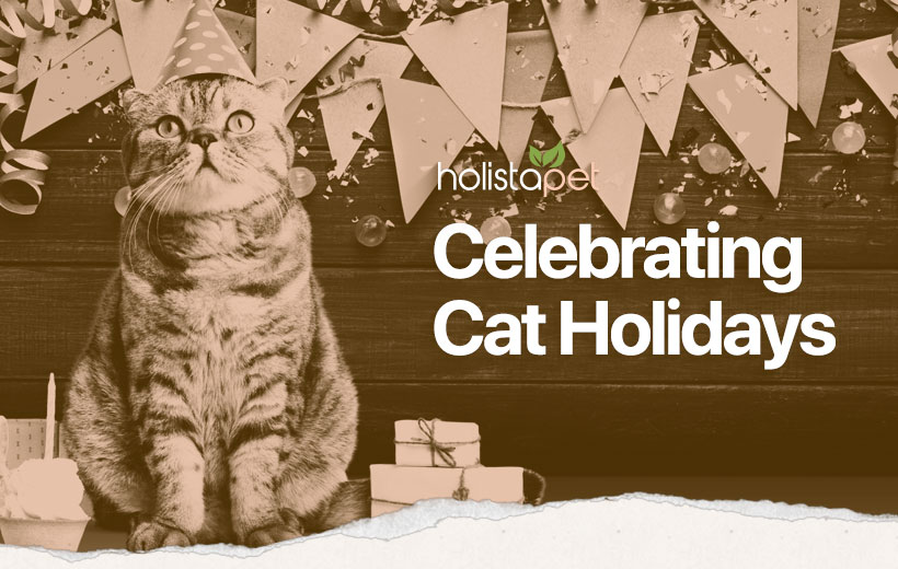 "a cat wearing a party hat next to some presents with text ""celebrating cat holidays"""