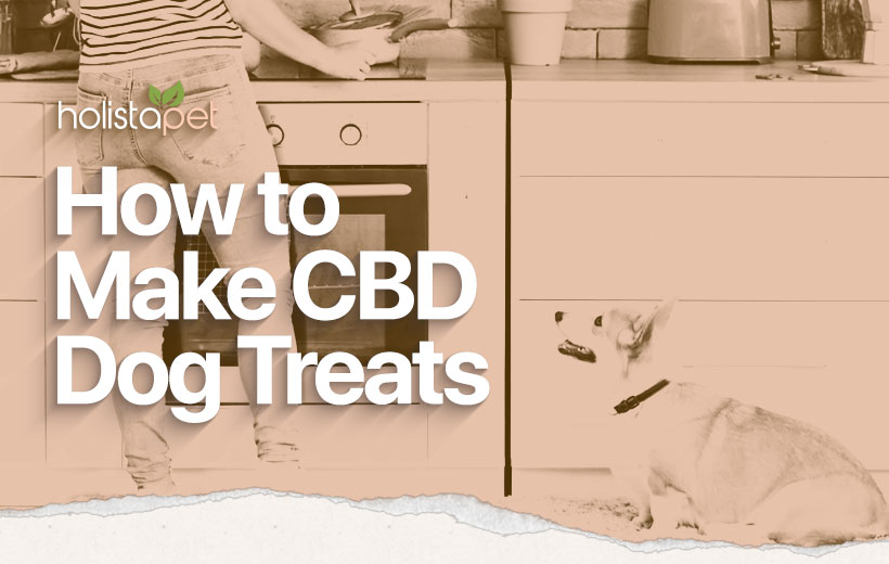 CBD Dog Treat Recipe